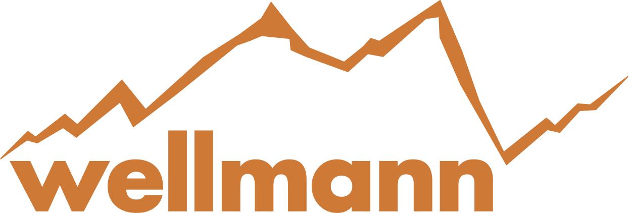 Startseite Wellmannbikes De